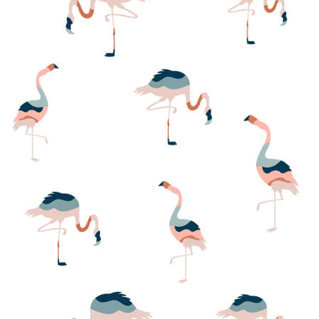 Abstract seamless pattern with colorful flamingo birds, bright vector illustration