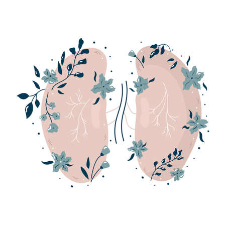Anatomical kidneys with flowers and different plants. Vector illustration, flat design. Ilustracja
