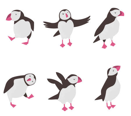 Set of funny puffins in different poses