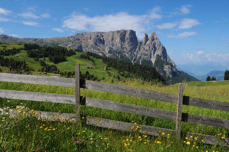 Sciliar from Seiser Alm Alpe di Siusi, Dolomites, Trenitno-Alto Adige, Italy. Stock Photo