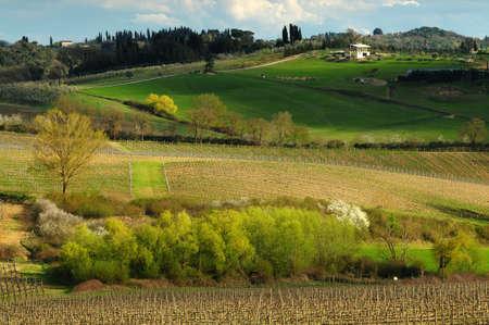 Beautiful Tuscan landscape near Castellina in Chianti, Siena. Italy. Stock Photo