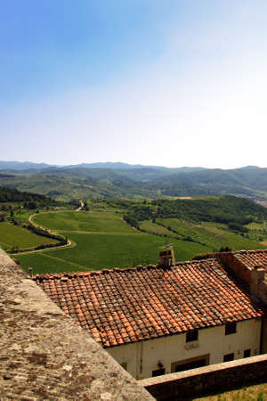 tuscania: Grunts Castle and Vineyards on background, Chianti near Florence in Tuscany, Italy Stock Photo