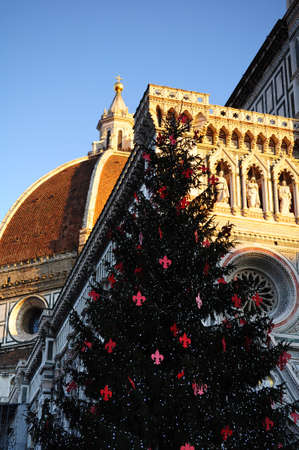 Christmas in Florence. Christmas tree in Piazza del Duomo with Cathedral Santa Maria del Fiore on the background. Italy