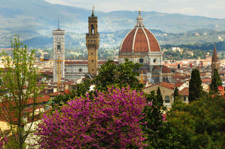 Cathedral of Santa Maria del Fiore in Florence as seen from the Bardini Garden during Spring Season with blooming purple trees (Judas Trees). Italy. 版權商用圖片
