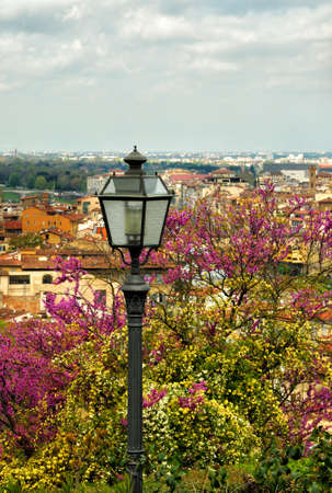 Old street lamp at Piazzale Michelangelo with blooming trees. Italy. Stockfoto