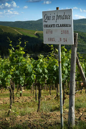 Panzano in Chianti, June 2020: cartel of the production of Chianti Classico Wine in a beautiful vineyard near Panzano in Chianti (Florence). Tuscany. italy Stockfoto