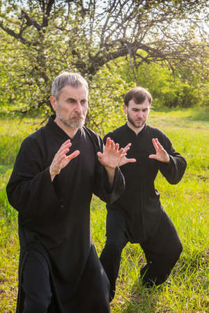 master and disciple of Taijiquan practice gymnastics in a savage garden