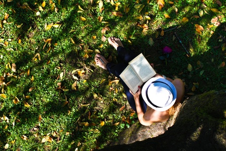 Woman reading benath tree photo