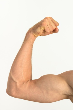 Picture of a muscular arm flexing photo