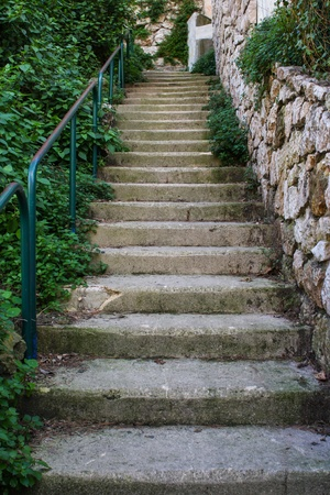 Outside Staircase With Green Plants And Stones Stock Photo, Picture And  Royalty Free Image. Image 13108426.