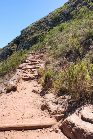 Hiking Path on table Mountain,, Cape Town South Africa photo