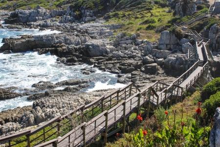 bridge in nature: Wooden  pathway along coast