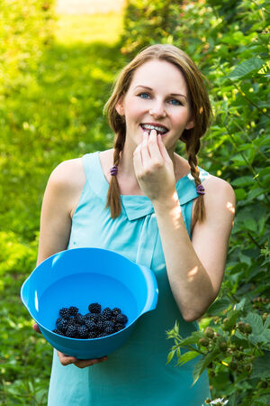 Young brunette woman in blue dress picking blackberries outdoors Stock Photo - 25603499