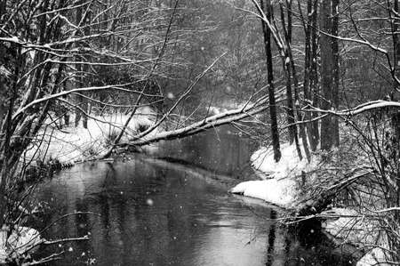 Winter Stream Stock Photo - 2982753