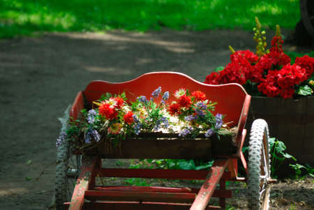 A photo of red flowers sitting in a red cart Stock Photo