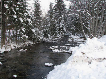 An icy creek on a chilly winter day with snowy trees