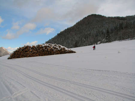 Beautiful winter landscape showing a cross-country ski run and a pile of wood in the background photo