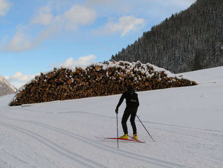 Beautiful winter landscape showing a cross-country ski run with people skiing and a pile of wood in the background