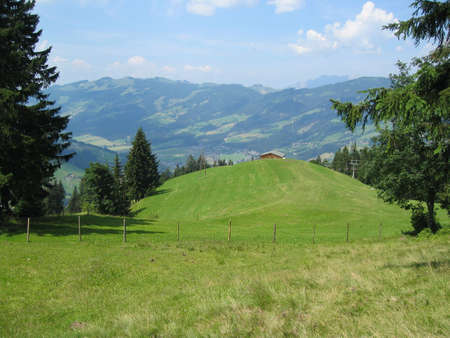 The Alps in Austria with green grass and trees Stock fotó