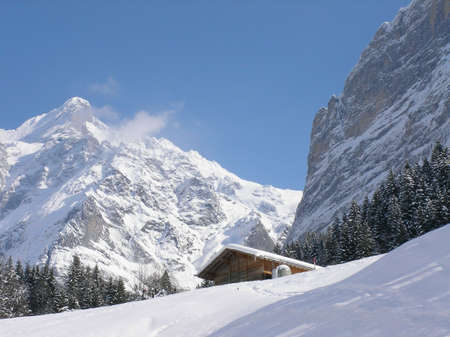 A beautiful winter landscape with a lonely hut photo