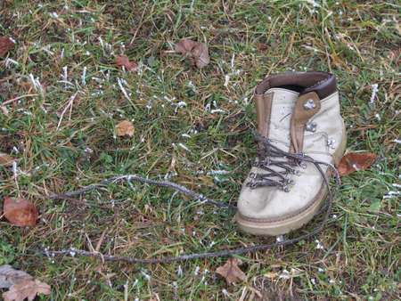 An old shoe on grass photo