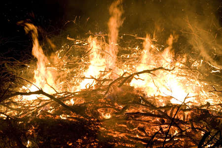 A photo of burning wood with detailed flames