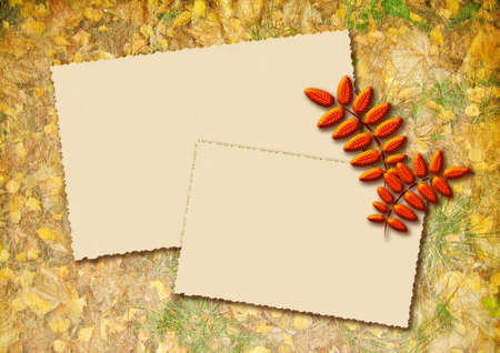Stylized autumn background with two frames for text and decor leaves photo