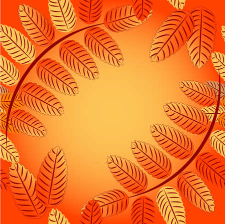 mountain ash: Autumn seamless background with ornament from leaves of mountain ash and field for text