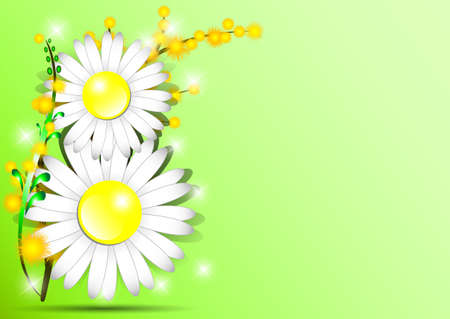Holiday greeting card with mimosa and shape of 8 from daisies on green background on International Womens Day. March 8. Vector illustration Vector