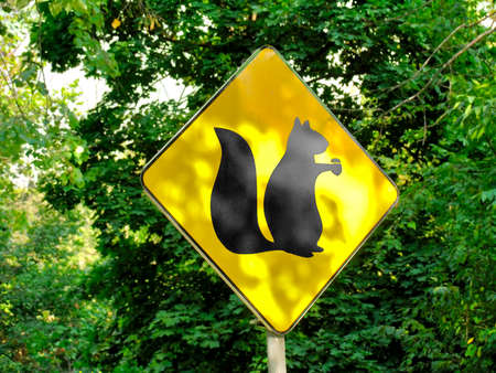 walking zone: Yellow sign showing habitats of squirrels. Shallow depth of field
