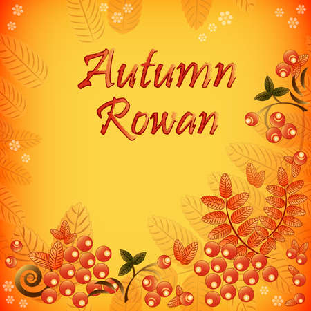 mountain ash: Autumn seamless background with ornament from leaves and berries of mountain ash. Vector illustration Illustration