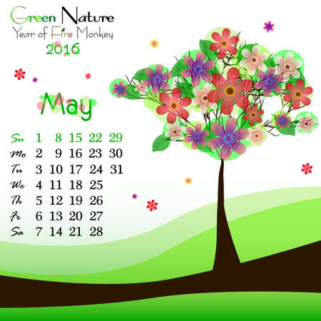 green dates: Abstract nature background with flowering tree and dates of May 2016. Green springtime. Vector illustration Illustration