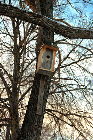 wintering: Wooden birdhouse on tree trunk for wintering birds against cloudy sky Stock Photo