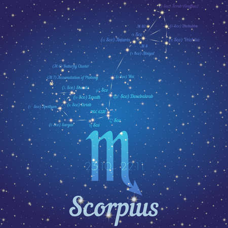 according: Zodiac constellation Scorpius - position of stars and their names on deep blue starry sky. Symbol of sign zodiac and date according to Western astrology. Vector illustration Illustration