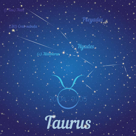 according: Zodiac constellation Taurus - position of stars and their names on deep blue starry sky. Symbol of sign zodiac and date according to Western astrology. Vector illustration Illustration