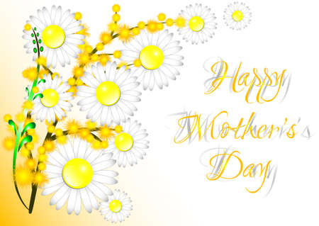 mimosa: Greeting card with daisies and mimosa on Mothers day on white. Vector illustration