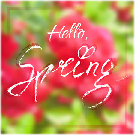 springtime: Welcoming card with white hand written lettering Hello Spring on natural floral blurry background. Illustration