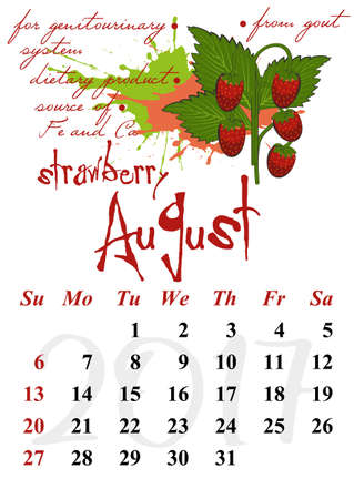 wild strawberry: Calendar design grid with useful properties of fruits and dates of summer month August 2017. Wild strawberry. Vector illustration