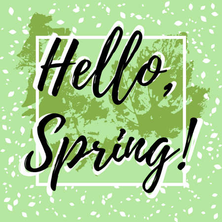 Welcoming card with hand written lettering Hello Spring with falling leaves out of frame and prints of spring leaves on pale green background. Vector illustration Illustration