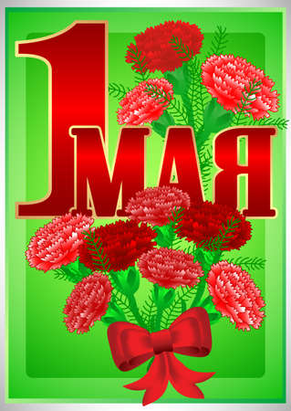 Postcard for holiday of Spring and Labor. Mayday. May 1 with bouquets of red carnations on green background. Russian translation: 1 may. Vector illustration Illustration