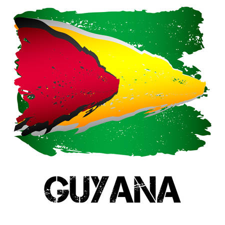 guiana: Flag of Guyana from brush strokes in grunge style isolated on white background. Country in South America. Vector illustration Illustration