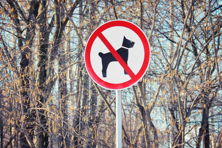 Sign dogs forbidden on background of bare tree trunks