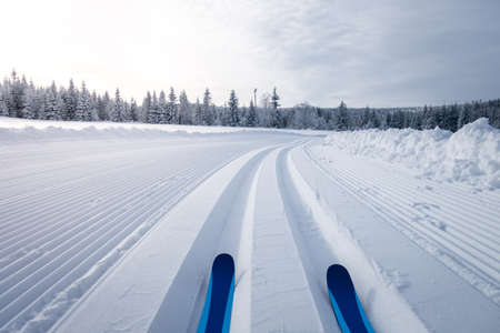 Winter landscape with cross country skiing trails, Jeseniky mountains, Czech Republic