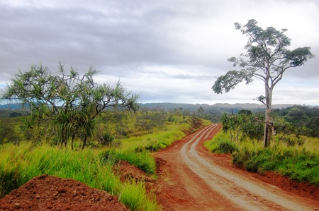 Road at red dirt nearby Sogeri village, Papua New Guinea