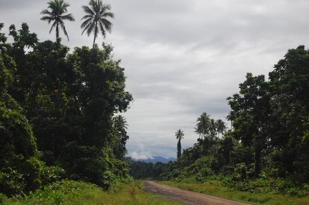 new guinea: Strada sterrata in giungle, Papua Nuova Guinea