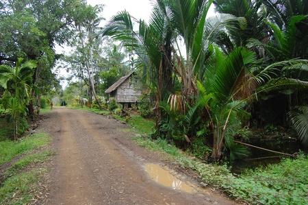 Nuova Guinea: Strada sterrata nel villaggio di Papua Nuova Guinea