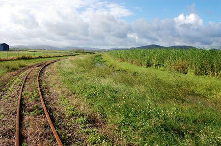 narrow gauge railway: Queensland sugar cane railways, near Mackay, Australia Stock Photo