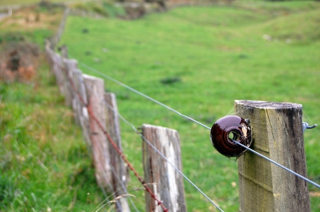 poling: Electric fence , Banks Peninsula, New Zealand Stock Photo