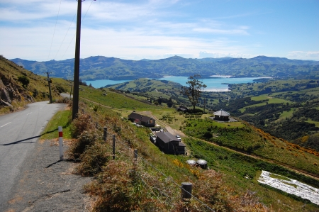 Road goes down to sea bay, near Akaroa, Banks Peninsula, New Zealand photo