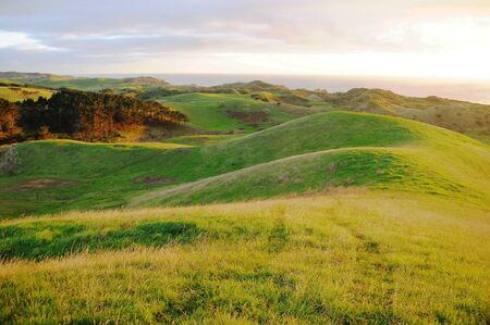 Green hills rural area, Dargaville, New Zealand Stock Photo